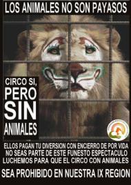 Cataluña prohibirá animales en loscircos.